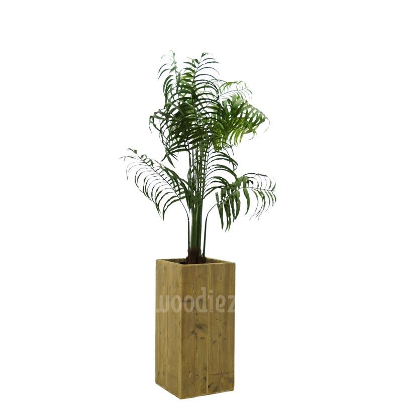 Plant huren varen met luxe steigerhouten plantenbak